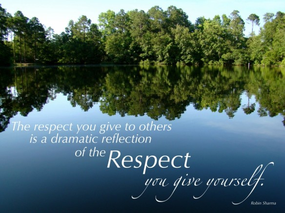 respect-quote-robin-1024x768